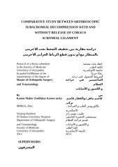 Protocol 19-11-2013.docx