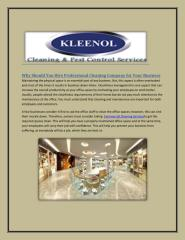 Hire Professional Cleaning Company-Kleenolng.pdf